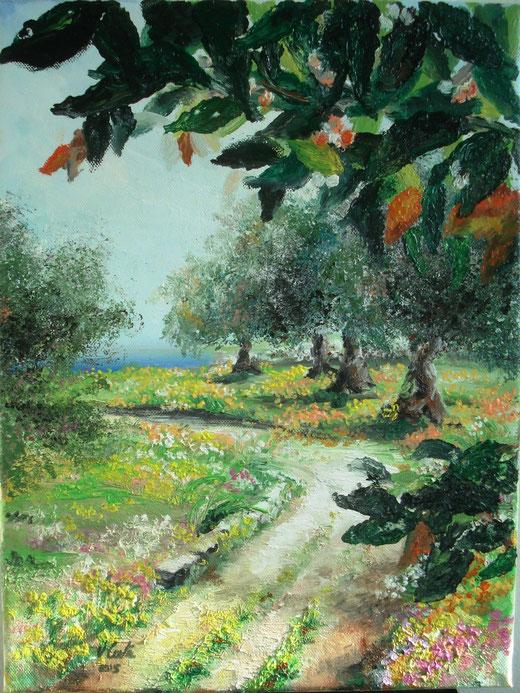Vincenza Conte - La mia terra - olio tela - 30 x 40