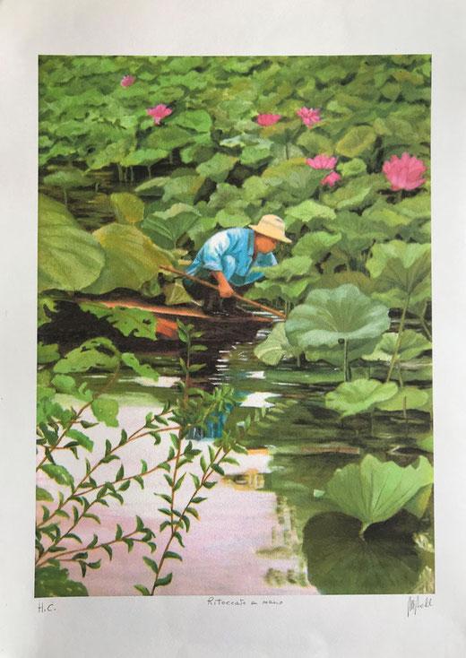 Nobili maria - Il raccoglitore di ninfee - litografia acquerellata su carta - 50 x 70