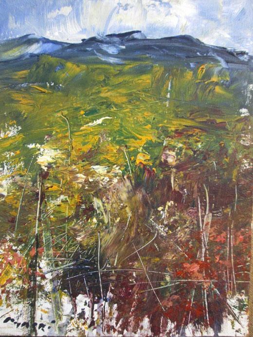 Masri - Landscape - olio tela  - 40 x 50