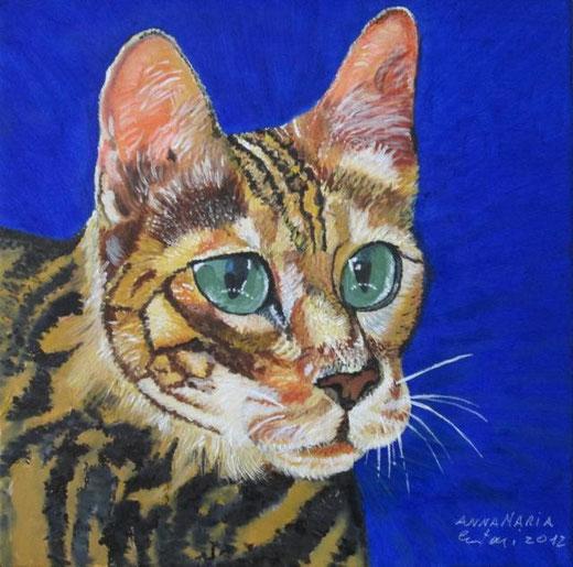Crestoni Anna Maria - Gatto tigrato - olio tela 40 x 40