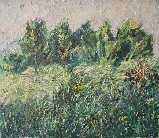 Mark Ansaloni - Campagna - olio su tela - 70 x 60