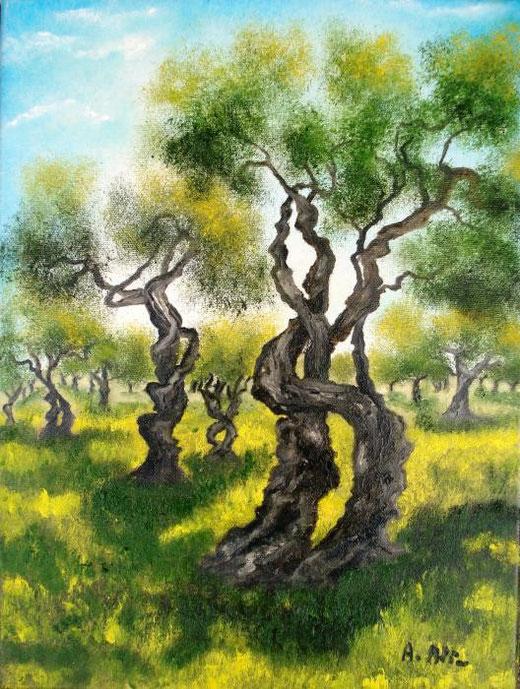 Alia Amalia - Uliveto -olio tela - 30 x 40