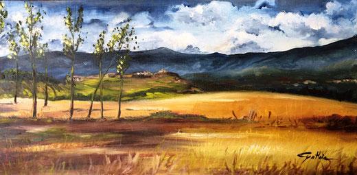 Cinzia Bresciani - Assolata campagna - olio su tela - 80 x 40