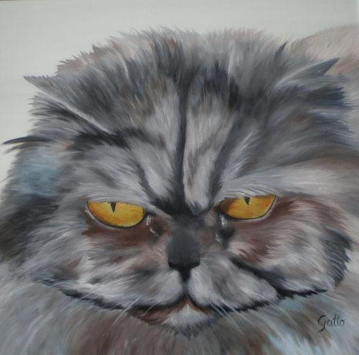 gatto anna fata olio su tela 60 x 60