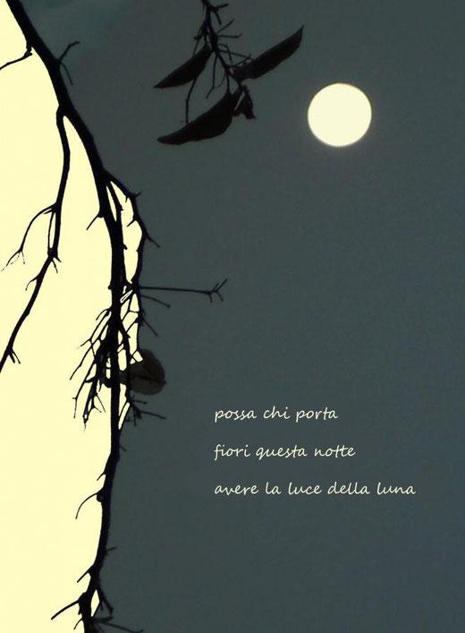 Di Leo Anna (Italia) – Haiku della luna – grafica digitale su carta - 25 x 34