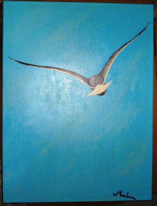Mauro Alice - Gabbiano - acrilico su tela - 60 x 80