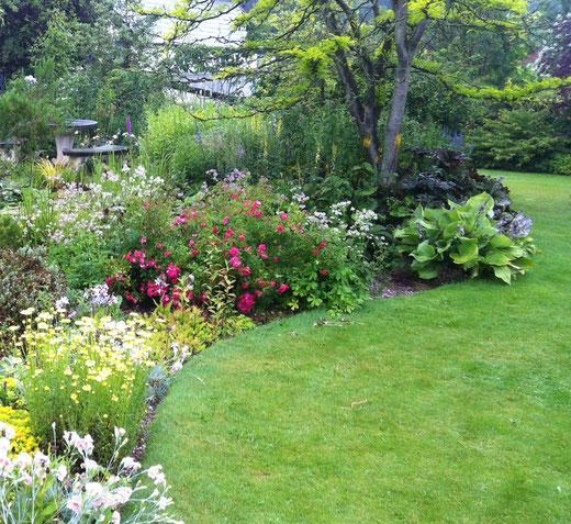 Bluebells Garden and Nursery