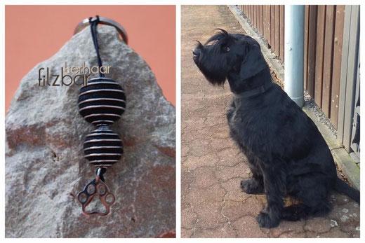 Schlüssel aus Hundehaar