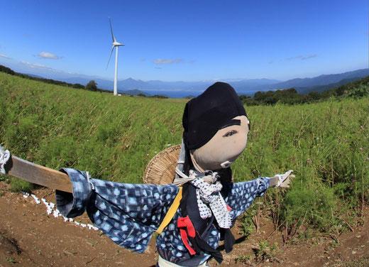 風力発電の看板娘  布引高原 渡邊 善夫