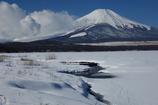 2008年富士山撮影ツアー  進藤弘融