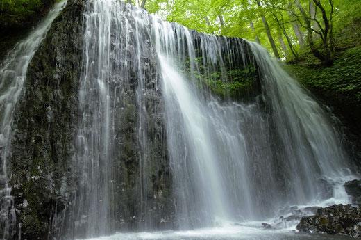 「衣の滝」 ・私は滝が好きで、これは幅があって堂々としており、内部に緑地があるのが面白い。   紺野 知文