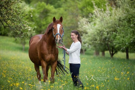 Tierfotografie, Königsberg, Bayern, Tier und Mensch, Pferde, Fotoshooting, Natur