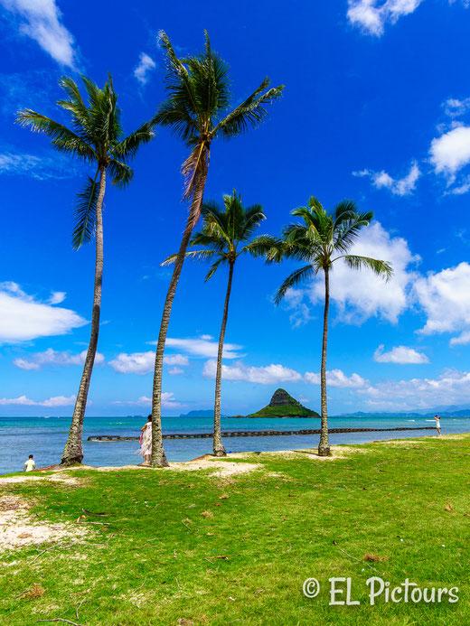 Kualoa Regional Park, Oahu
