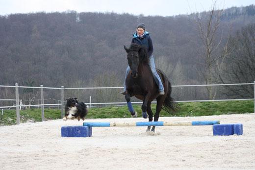 Wichtig im Training: Spaß für Pferd, Hund und Reiter
