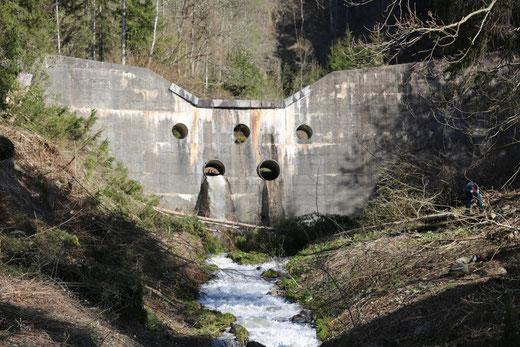 die Böschungen im Bachverlauf zwischen Brücke und Sperre sind zum größten Teil bereits gesäubert