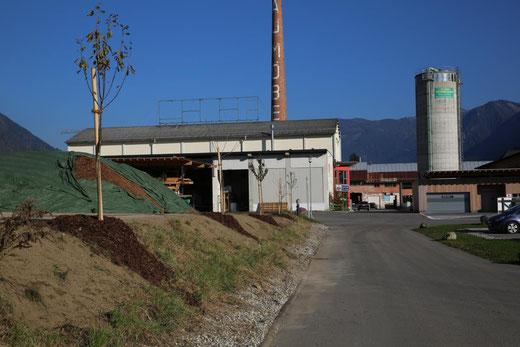das Gestrüpp auf dieser Böschung wurde entfernt, teilweise wurde neu  humusiert und die Kirschbäume gepflanzt