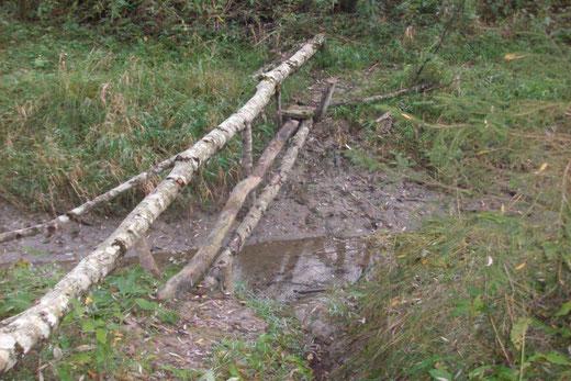 """so sah die hochwassergefährdete """"Brücke"""" vorher aus - Foto A. Rauter jun."""