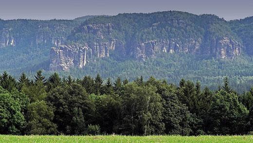 Le parc national de la Suisse saxonne, avec ses aiguilles de grès émergeant de la forêt, est sillonné de dizaines de sentiers de randonnées.