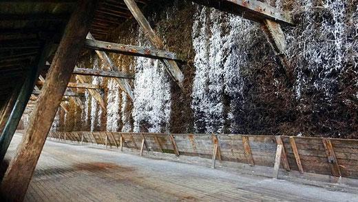 Galerie autour d'un Gradierwerk, un dispositif servant à distiller l'eau salée.