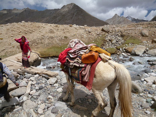 立ち往生している馬と若い女性の馬子さん (馬がびくとも動かず困っている様子)