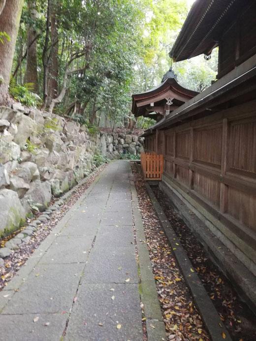 神社の後ろも歩いてみると、静かな気持ちになれます。