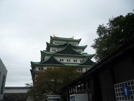 名古屋城の金のシャチホコ見てみたかった~