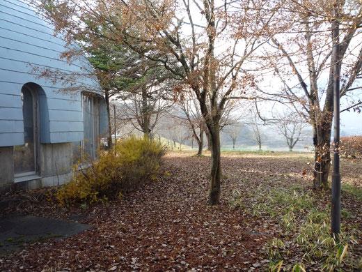 朝霧がかかっていて中庭が、とても素敵でした!