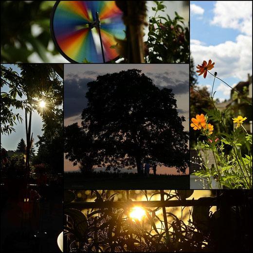 AincaArt, Ainca Gautschi-Moser, Foto und Text, writer photographer, www.aincaart.ch, Quersatz, Sun Star, Sonnenstern