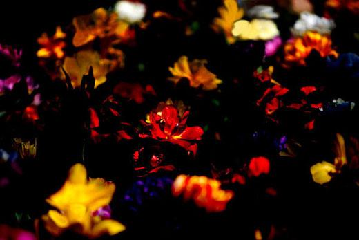 darkness_06