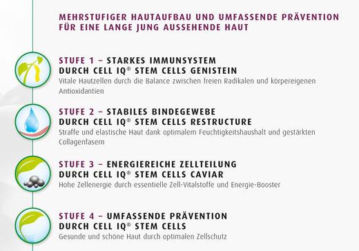 Anti-Aging Behandlung mit Cell IQ