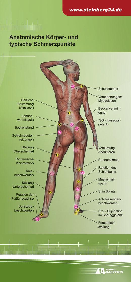 Fein Menschlicher Körper Knochentabelle Bilder - Anatomie und ...