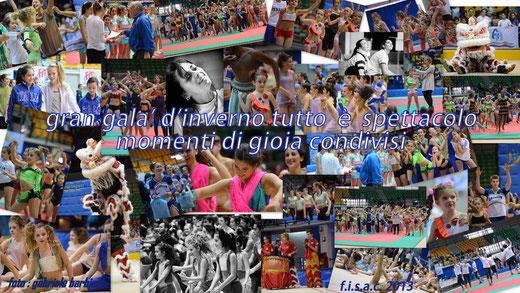 pala desio, 1 dicembre 2013,fitkid,teamgym, ginnastica estetica, acrobatica, campioni europei, acrosport