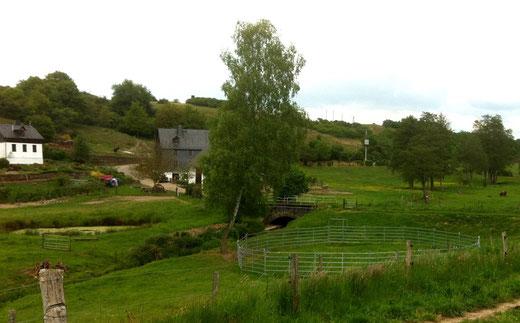 Die Malerisch gelegene Mühle von Sylvia und Friedrich