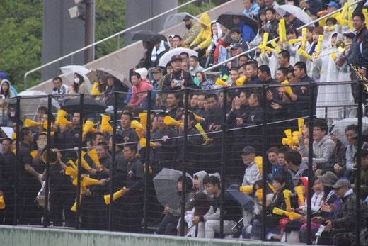 横浜高校 2016 春季大会 特集ページ