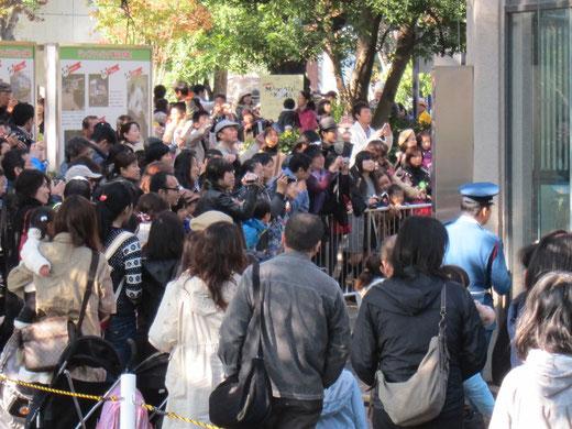 上野動物園でパンダに群がる人々