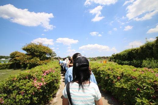 ミニ新幹線からの景色