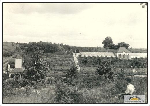 Blick vom Kirschberg auf das Transformatorenhaus und die Spalierobstanlage an der Orangerie