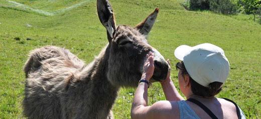 Mit Tieren sprechen - Dekofot TTouches