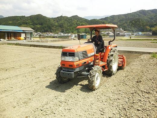 緑肥播種後のトラクター耕耘