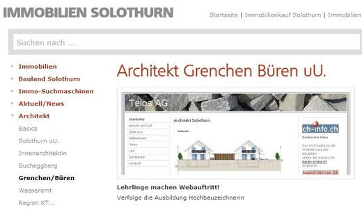 architekt solothurn