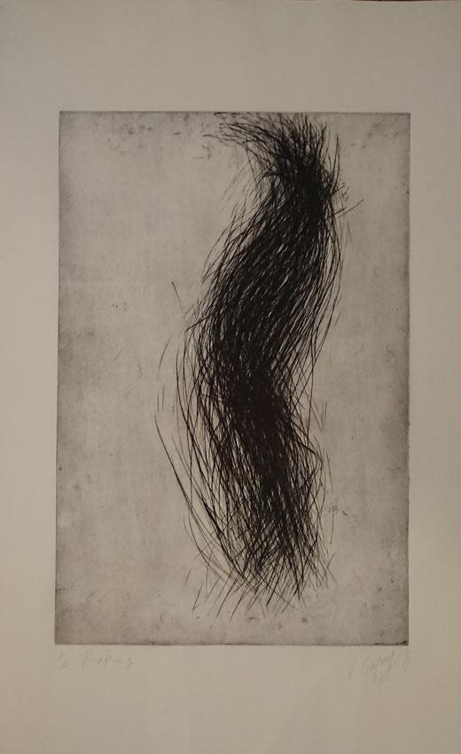 V. Capony, To rake 2, pointe sèche, 9à x 54 cm.
