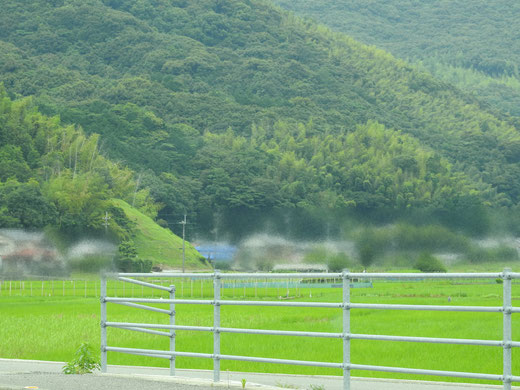 高知県M様の津波シェルターCLヒカリ設置写真2