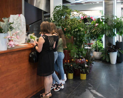 clic collect fleurs Rodez