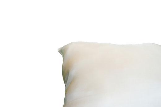 タイシルク クッションカバー  リーフ デザイン アイボリー 【Leaf Design , Ivory】 45×45cm 対応の商品写真16