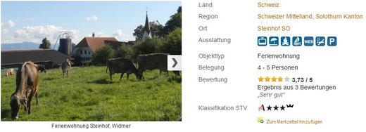 fewo kanton solothurn