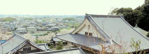 大阪府茨木市安威 大念寺