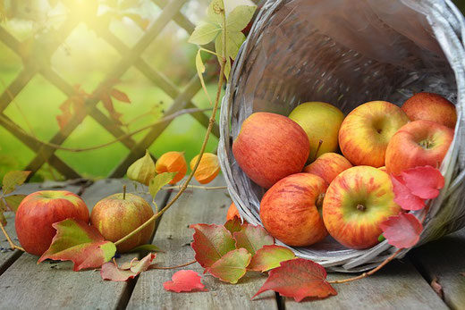 Apfel, Wirkung, Anwendung, Tee, Heilwirkung