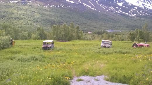 Wracks am Straßenrand: diese Expedition zum Nordkap hat aufgegeben
