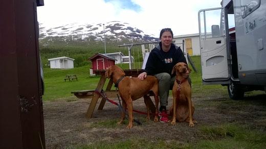 Maren kümmert sich nicht nur um die Hunde, ohne ihre permanente Unterstützung läuft hier nichts.