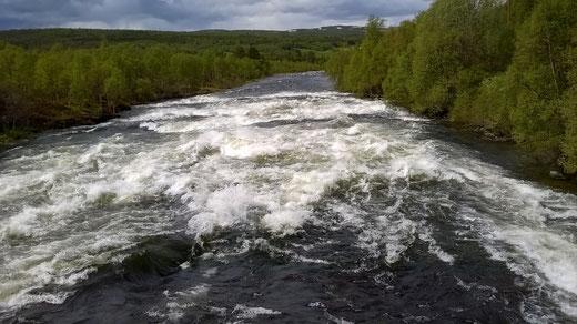 Wasserfälle sind hier reine Rarität